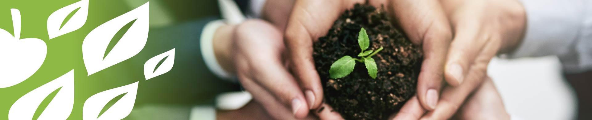 Environnement - Communauté de Communes de la Vanne et du Pays d'Othe